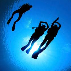 PADI O/W Diver - Milieu naturel 1 à 4 - En fosse de plongée et lac.