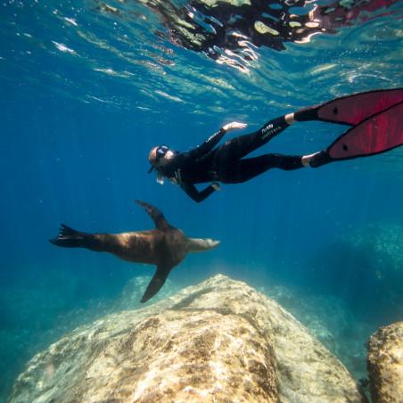 Advanced Freediver - En piscine et fosse de plongée.